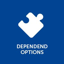Abhängige Optionen